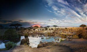 Viaje a Tanzania - ONEIRA Club de viajeros